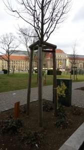 Lipsia-e-motion Baum Leipzig